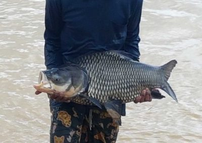 Fish going into Chalong Fishing Park-2016-10-18-10.22.44