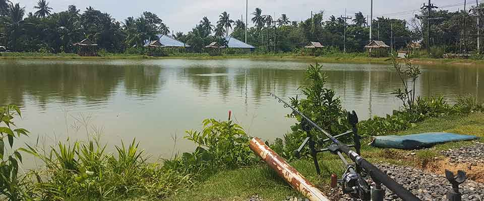 Six months ago Chalong Fishing Park opened its gates