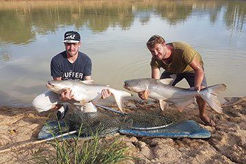 We Are Now Fishing at Chalong Fishing Park - Brothers Tim & John bring two Mekong Catfish within seconds of each other