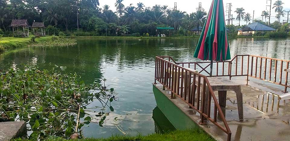 Chalong Fishing Park the Lake2