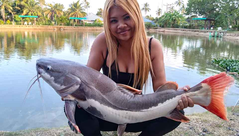Day for Arapaima