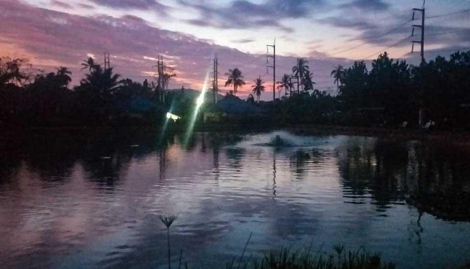 Dawn A Beautiful Time