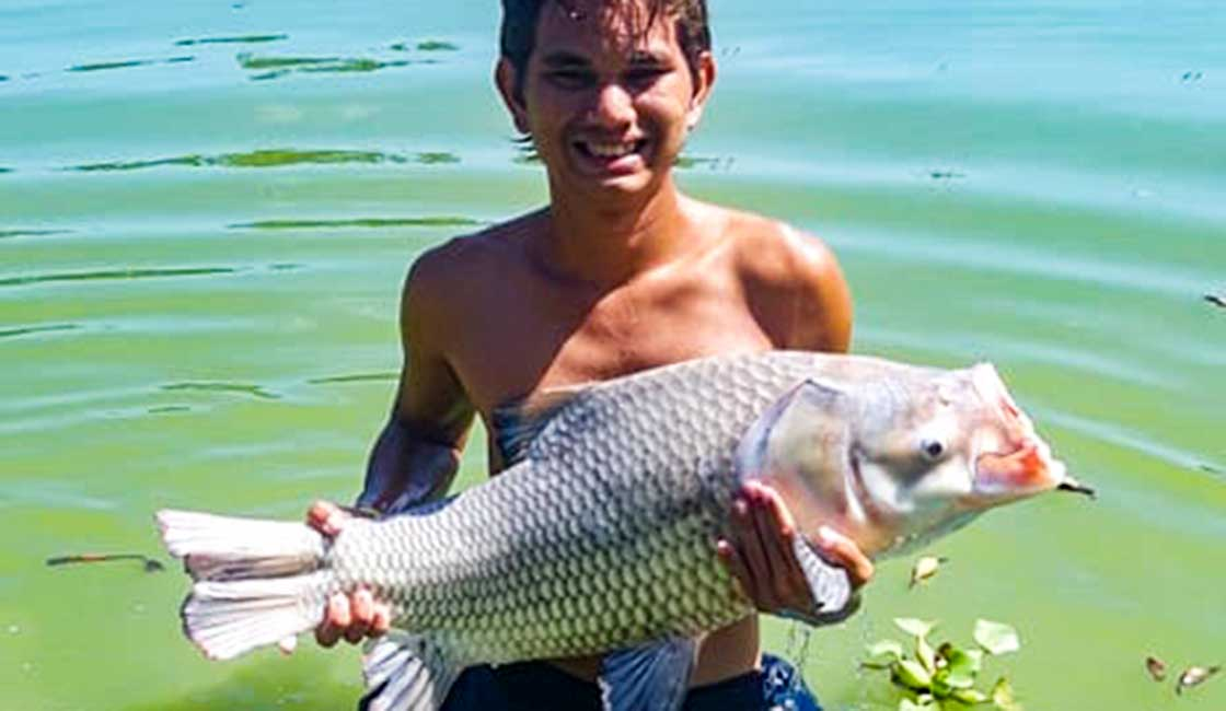 Another Looong Month Ends-Siamese Carp